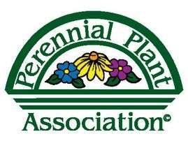 How is the Perennial Plant of the Year Chosen?